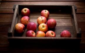 Картинка яблоки, витамины, 12 яблок