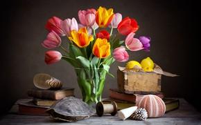 Картинка темный фон, книги, букет, тюльпаны, ракушки, фрукты, натюрморт, лимоны, композиция, панцирь