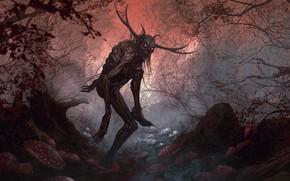 Картинка лес, ночь, существо