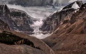 Картинка Alberta, Canada, Glacier Icefields Parkway, Columbia Icefield