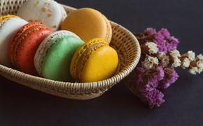 Картинка colorful, десерт, пирожные, сладкое, sweet, dessert, bright, macaroon, french, macaron, макаруны