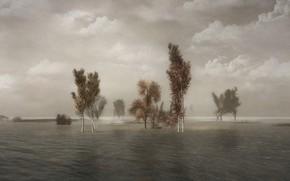 Картинка облака, деревья, пейзаж, природа, туман, рендеринг, пасмурно, берег, дымка, березы, водоем, облачно, берёзки, диджитал арт