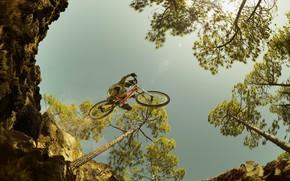 Картинка небо, деревья, велосипед, пропасть, полёт
