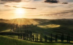 Картинка солнце, рассвет, холмы, Италия, домики, кипарисы, Тоскана