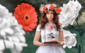 Картинка взгляд, девушка, цветы, поза, розы, платье, шатенка, венок, боке, Renat Fotov