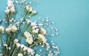 Картинка цветы, букет, белые, гипсофила, Лимониум, limonium, gypsophila