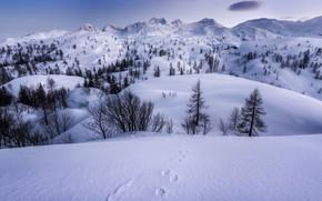 Картинка снег, горы, зима