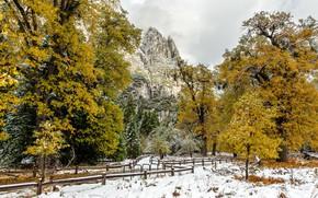 Картинка Калифорния, США, Йосемити, Национальный парк, Сьерра-Невада