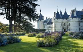 Картинка лето, цветы, замок, Франция, сад, Château de Bénouville, Chaumont-sur-Loire