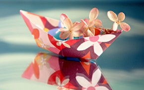 Картинка макро, отражение, цветки, гортензия, бумажный кораблик