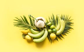 Картинка листья, фон, лимон, кокос, бананы