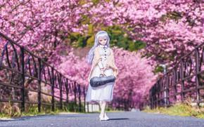 Картинка деревья, мост, кукла, сакура
