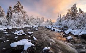 Картинка зима, лес, снег, река, Россия, Кольский полуостров, Мурманская область, Сергей Королёв