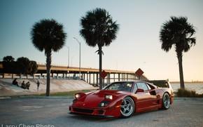 Картинка мост, пальмы, люди, Ferrari, F40, Miami, Larry Chen