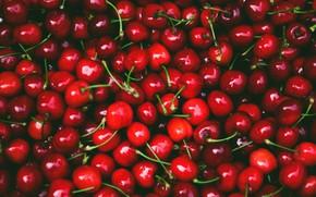 Картинка вишня, ягоды, темный фон, красные, много, черешня