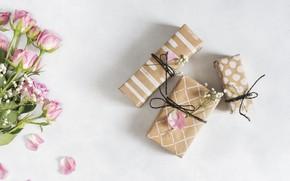 Картинка розы, букет, лепестки, подарки, День всех влюбленных