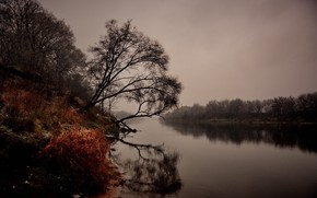 Картинка осень, пейзаж, природа, река, хмурое утро