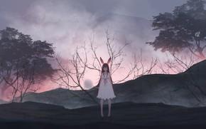 Картинка девушка, деревья, одуванчик, дым, кролик, искры, ушки