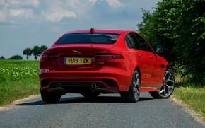 Картинка красный, Jaguar, сзади, седан, 2019, XE P300 AWD