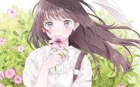 Картинка лицо, девочка, каникулы, длинные волосы, art, большие глаза, космеи, белая блузка, цветок в руке, Ashizuko