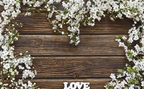 Картинка цветы, фон, весна, LOVE