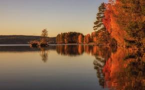 Картинка осень, лес, небо, деревья, озеро, отражение, берег, вечер, освещение, водоем, водная гладь, золотая осень, зеркальное, …