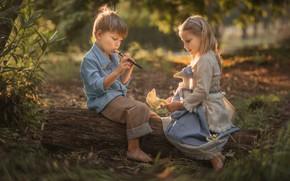 Картинка лето, природа, дети, игрушка, игра, мальчик, девочка, бревно, парочка, дудочка, Evgeny Loza, Евгений Макаренко