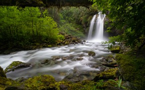 Картинка лес, река, водопад, штат Вашингтон, Washington State, North Cascades National Park, Национальный парк Норт-Каскейдс