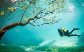 Картинка underwater, sea, diver