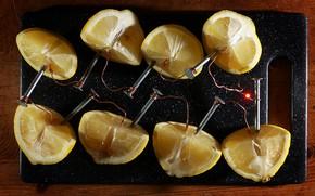 Картинка провода, электричество, черный фон, гвозди, лимоны, ток, заряд, альтернатива, кислота, альтернативная энергия