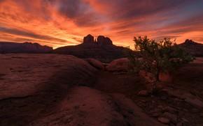 Картинка облака, пейзаж, закат, горы, камни, дерево, скалы, пустыня, вечер, Аризона, зарево, США, Америка, рельеф, каньоны, …