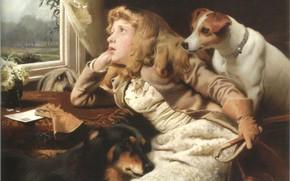 Картинка окно, девочка, три собаки, BARBER, NO RIDE TODAY