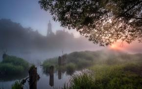 Картинка лето, трава, пейзаж, природа, туман, река, дерево, рассвет, село, утро, церковь, Андрей Чиж, Шерна