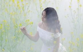 Картинка цветы, природа, туман, модель, луг, азиатка