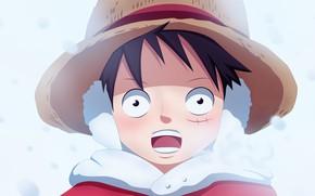 Картинка зима, шапка, мальчик, One Piece, шрам