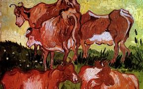 Картинка коровы, Vincent van Gogh, Auvers sur Oise, Cows after Jordaens