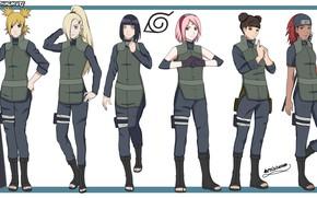 Картинка game, Naruto, Sakura, anime, pretty, ninja, asian, Temari, manga, shinobi, Haruno, Naruto Shippuden, byakugan, Hinata, ...