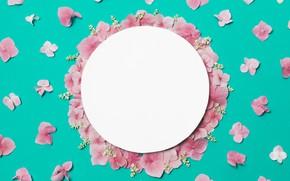 Картинка цветы, фон, лепестки, розовые, pink, flowers, background, petals, frame, floral