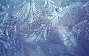 Картинка иней, макро, узор, текстура, мороз