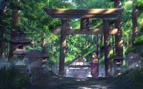 Картинка девушка, природа, храм, тории, NIK