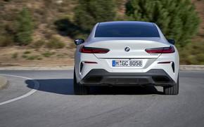 Картинка белый, купе, BMW, Gran Coupe, корма, 840i, 8-Series, 2019, четырёхдверное купе, 8er, G16