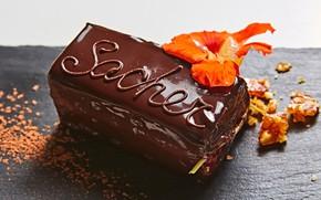 Картинка цветок, украшение, пирожное, десерт, шоколадное