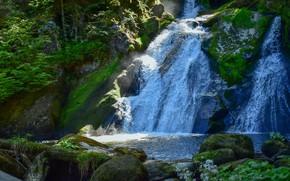 Картинка зелень, свет, камни, скалы, водопад, мох, поток, мощь, бревно, бурный