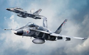 Картинка США, истребитель-бомбардировщик, Палубный, McDonnell Douglas, Штурмовик, F/A-18 Hornet, US NAVY, Auletta, F/A-18A/D VFC-112 Aggressor