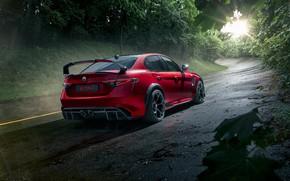 Картинка Alfa Romeo, Giulia, GTAm, 2021