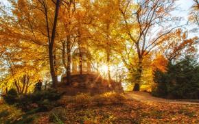 Картинка осень, солнце, лучи, пейзаж, природа, парк, Краснодар, Павел Сагайдак