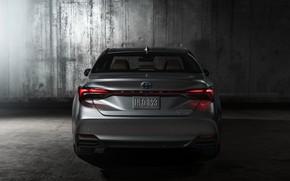 Картинка Toyota, вид сзади, 2018, Avalon, Limited Hybrid