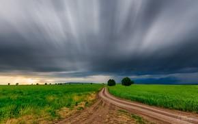 Картинка дорога, поле, небо, вечер, Faik Nagiyev