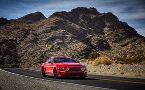 Картинка Mustang, Ford, 2019, SEMA 2018, Series 1 Mustang RTR