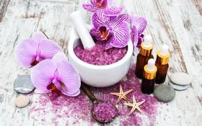 Картинка цветок, орхидея, спа, соль, Olena Rudo